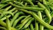 Рецепти с: Зелен фасул